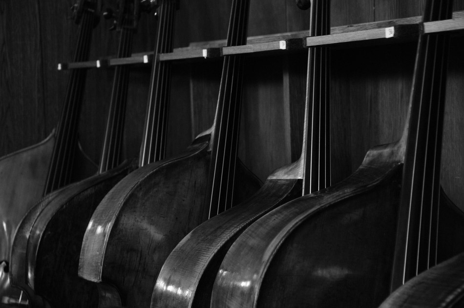 bw-contrabasses1